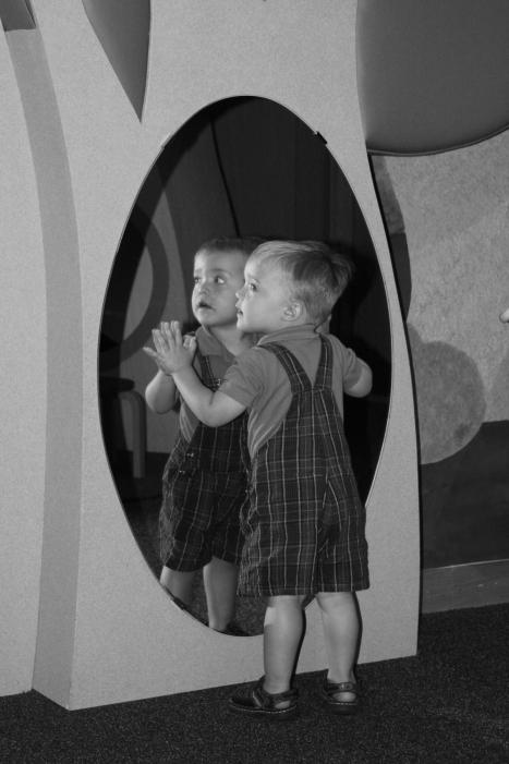 Hudson mirror bw